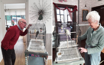Two new feathered friends at The Old Downs Residential Care Home