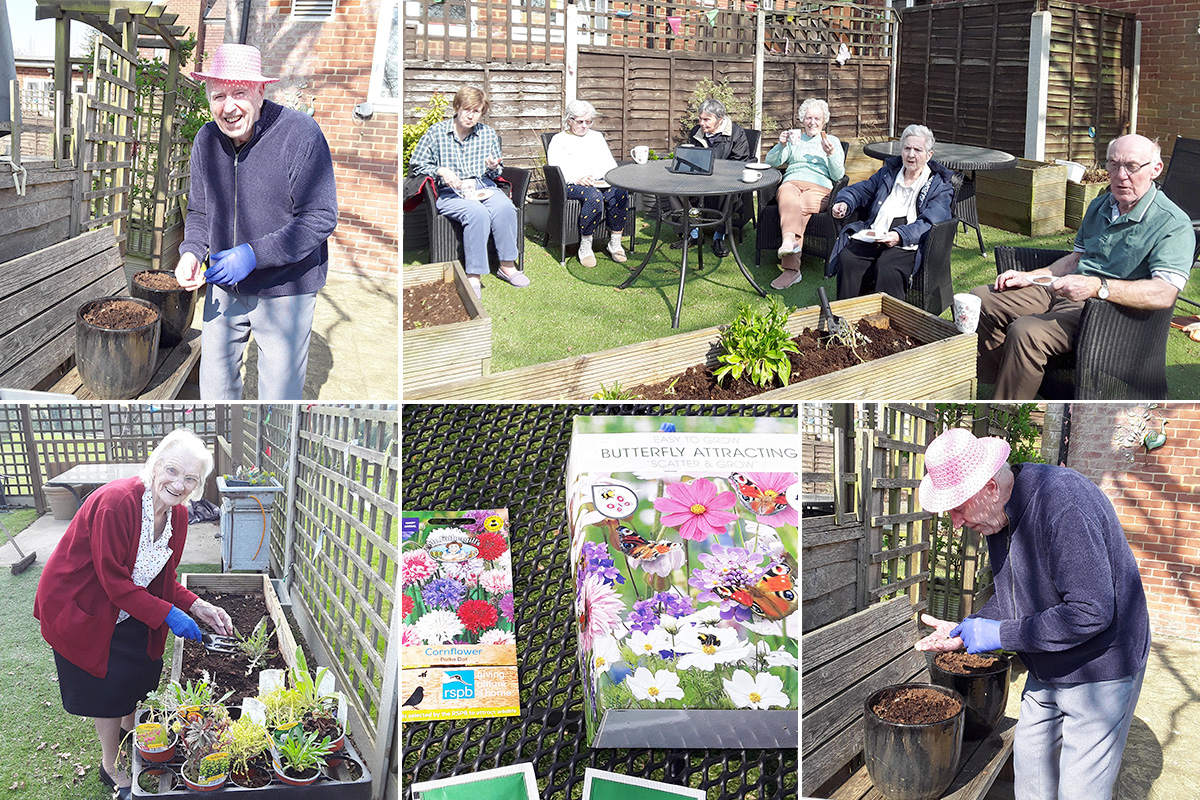 Gardening Club residents plant seeds at The Old Downs Residential Care Home